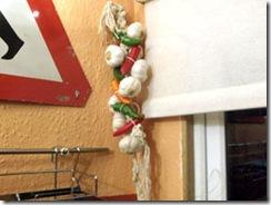garlicstring1_300x225