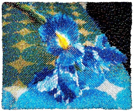 tayra-2009-11-23_125929