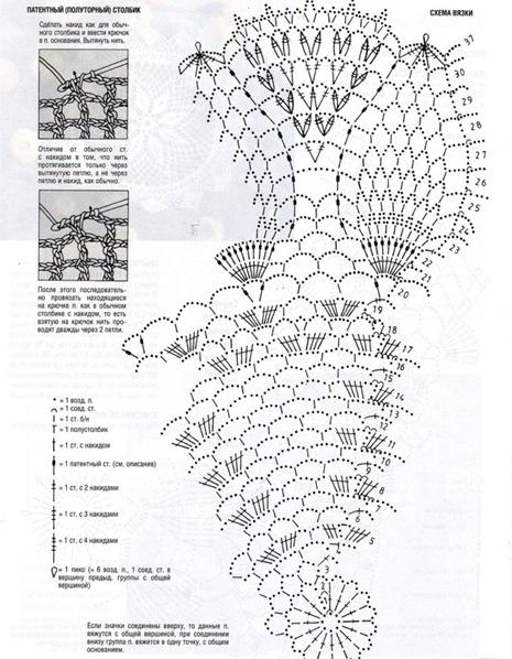 tayra-2009-11-29_125920