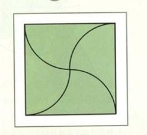 tayra-2009-11-30_124515