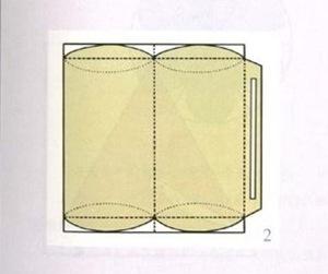 tayra-2009-11-30_125101