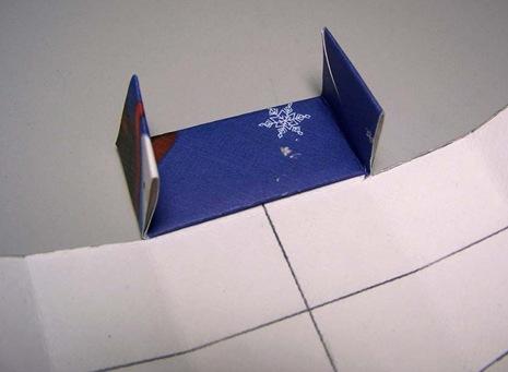 tayra-2009-12-14_160315