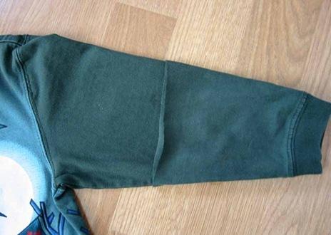 tayra-2009-12-26_192740