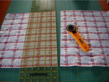 tayra-2010-01-10_160047