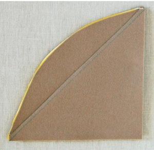 tayra-2010-01-10_170924