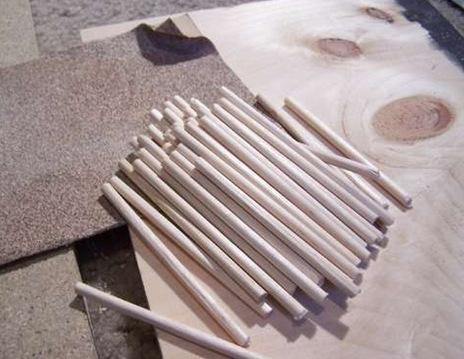 tayra-2010-01-24_212731