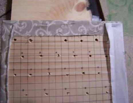 tayra-2010-01-24_212816