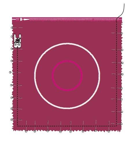 tayra-2010-01-27_213639