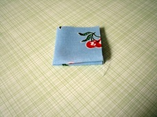 tayra-2010-01-29_195318