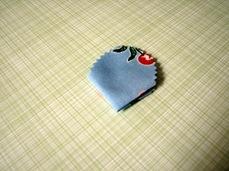 tayra-2010-01-29_195337
