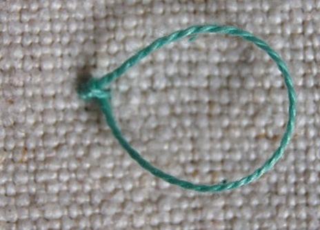 tayra-2010-01-29_213211