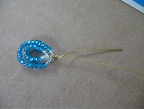 tayra-2010-02-20_103324