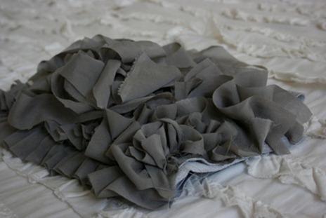 tayra-2010-02-25_112648