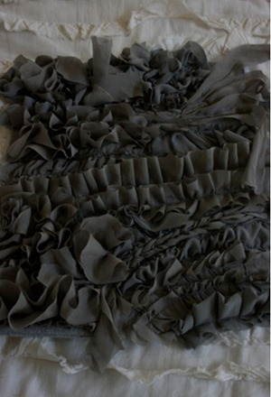 tayra-2010-02-25_112702