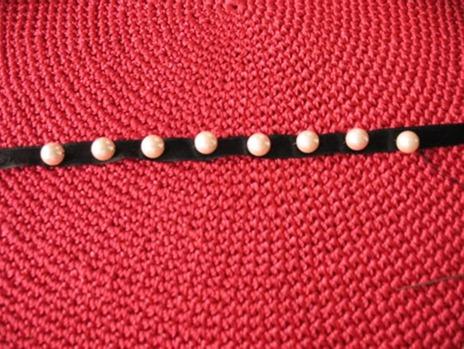 tayra-2010-02-26_112359