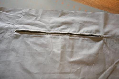 tayra-2010-03-30_132101