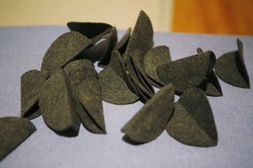 tayra-2010-03-30_132117