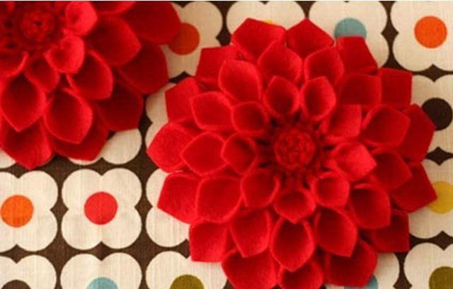 tayra-2010-05-10_093458