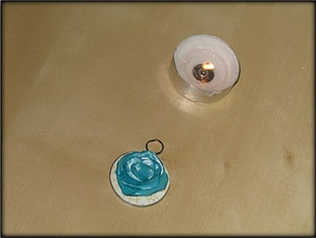 tayra-2010-06-11_113726
