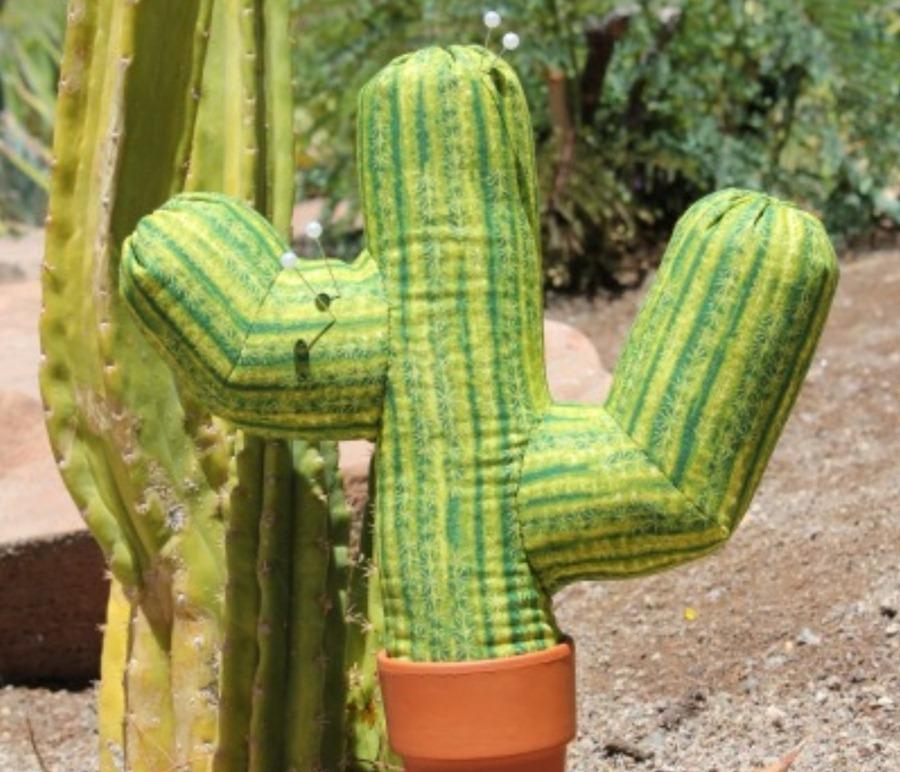 кактус фото мексиканский